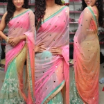 Multicolour Mirrora saree