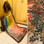 Peacock designer saree