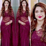 Burgundy  shazz saree