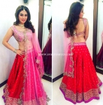 Hansika Red Jewel